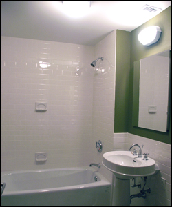 Bathtub Shower Units