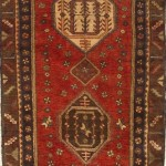 Oriental Carpet Runners