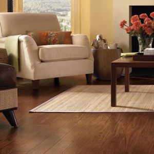Armstrong Vinyl Floor Tiles Prices