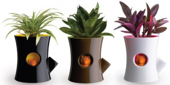 Flower pot design ideas with Unique Design