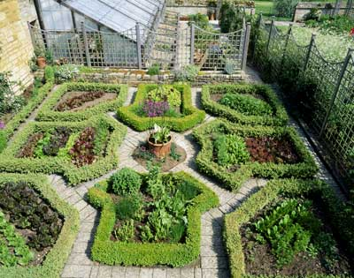 Urban roof vegetable garden design home designs project for Veggie garden designs