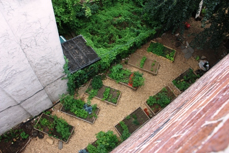 Urban roof vegetable garden pictures