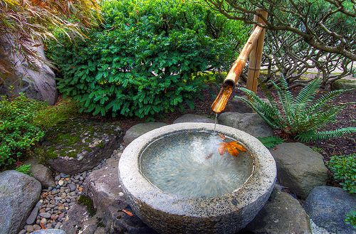bamboo fountain design ideas