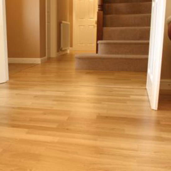 Best Laminate Wood Flooring Cleaner