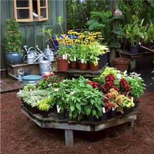 garden design ideas on a budget