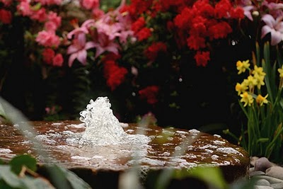 garden fountain design ideas pictures