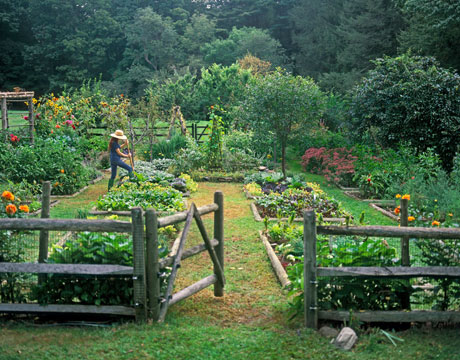 japanese garden design raised vegetable beds pictures