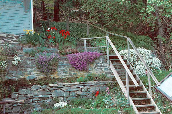 slope garden design photos