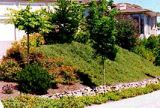 slope garden design
