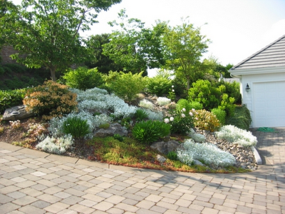 Small rock garden designs home designs project Small rock garden