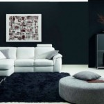 living room in black and white ideas