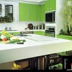 green-kitchen-for-cool-home