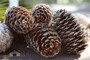 pine cones with glitter