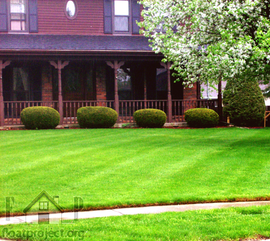 healthy lawns