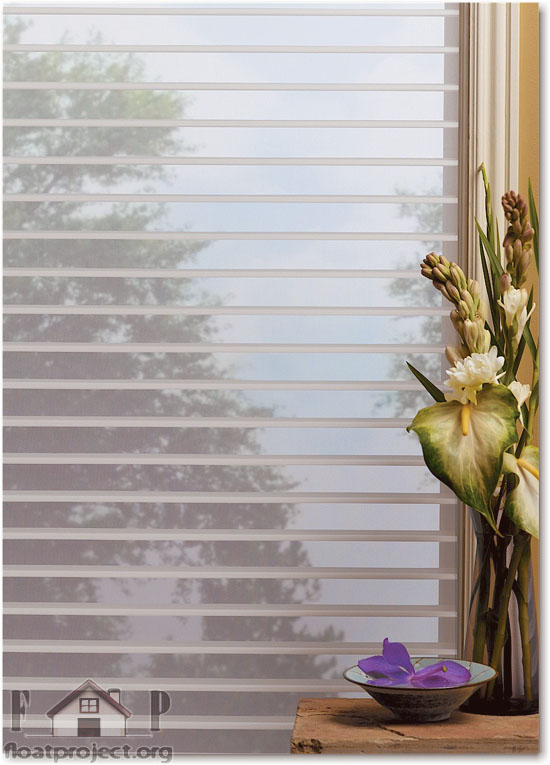 window shadings