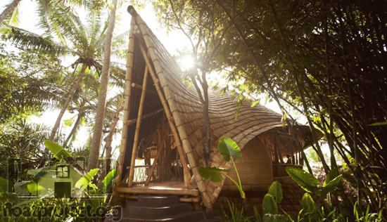 Eco-friendly bamboo houses
