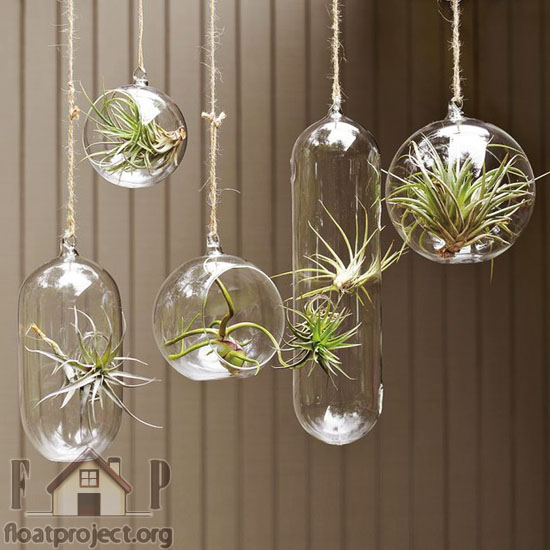 Cool Planter Ideas For Your Houseplants Home Designs Project