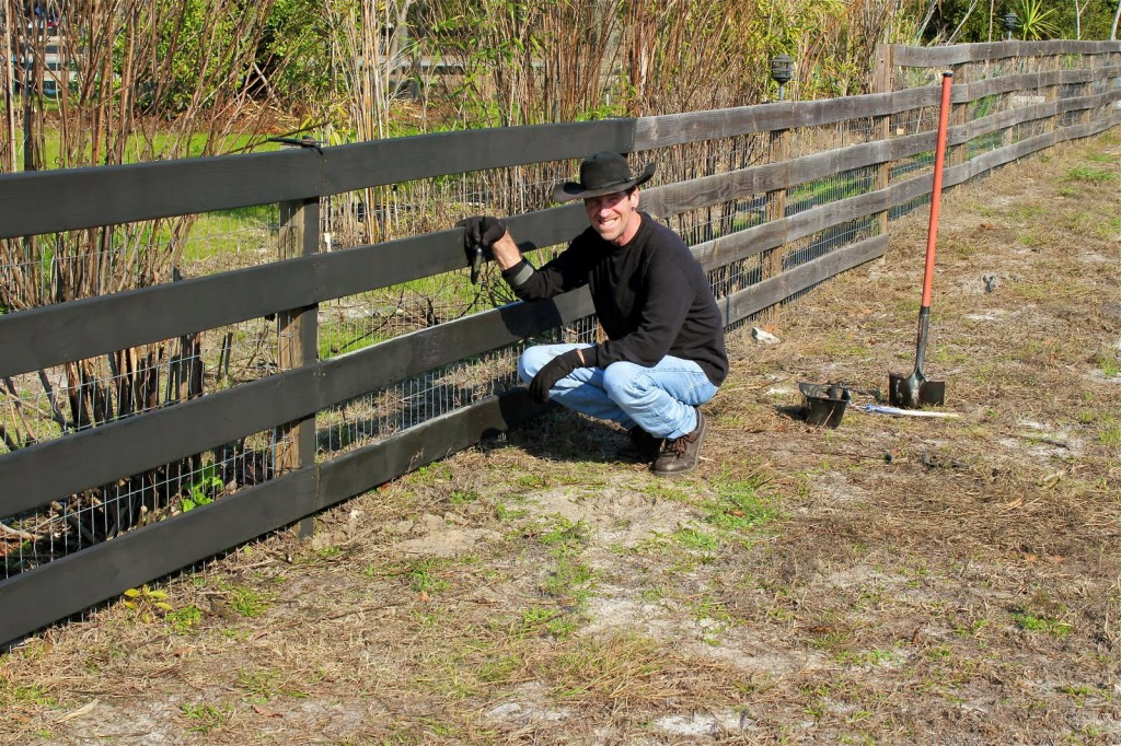 A few beautiful ideas and tips on painting the wooden for Oil based fence paint